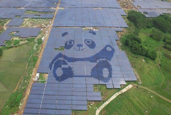 panda solar farms